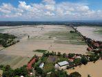 Kota dan Kabupaten Pekalongan Banjir, Ratusan Warga Terpaksa Mengungsi