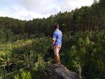 Wisata Murah Hutan Pinus Kalilo Purworejo