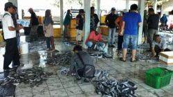 Aktivitas pelelangan ikan di TPI Pandanarang, Pantai Teluk Penyu, Cilacap