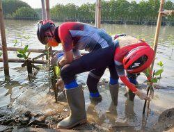 Ganjar Pimpin Penanaman Mangrove di Area Penurunan Muka Tanah