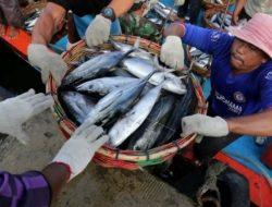 Bentuk 34 Desa Maritim, Tingkatkan Ekonomi Warga Pesisir